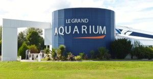 2 - Grand Aquarium de Saint-Malo